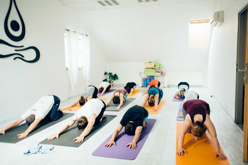 Yoga za kralježnicu