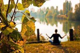 Ayurvedska priprema za jesen
